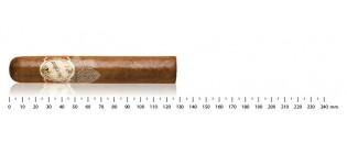 Humidor villa Spa  Farbe violett  Kapazität 150 Zigarren  Inklusive Cigar Spa