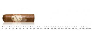 Adorini - Zigarrenetui aus braun Leder - 2 bis 3 Zigarren