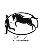 Cavalier Genève